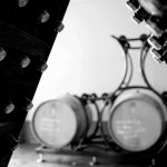 Meet The Winemaker Pairing Event – Francesca Bonfadini